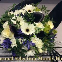 seasonal-selection-moody-blues