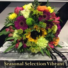 seasonal-selection-vibrant
