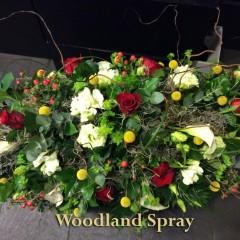 woodland-spray-1024x765